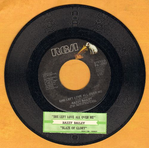 Bailey, Razzy - She Left Love All Over Me/Blaze Of Glory  - EX8/ - 45 rpm Records