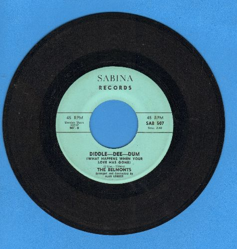 Belmonts - Diddle-Dee-Dum/Farewell - EX8/ - 45 rpm Records