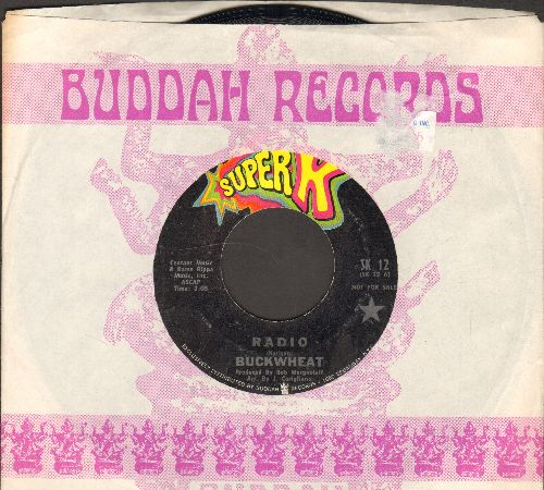 Buckwheat - Radio/Goodbye Mr. Applegate (with company sleeve) - NM9/ - 45 rpm Records