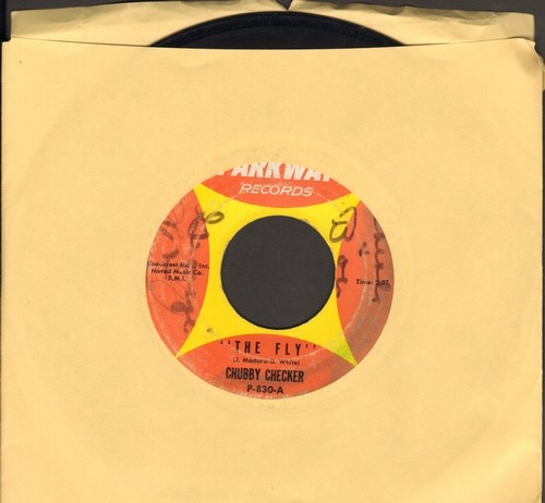 Checker, Chubby - The Fly/That's The Way It Goes (wol) - VG7/ - 45 rpm Records