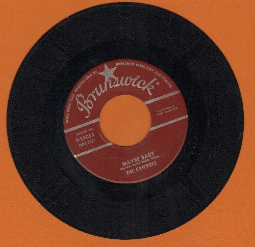 Crickets - Maybe Baby/Tell Me How - EX8/ - 45 rpm Records