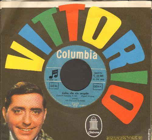 Vittorio - Liebe, die nie vergeht (Cuando Calienta El Sol) (GERMAN Pressing with picture sleeve) - EX8/EX8 - 45 rpm Records