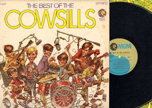 Cowsills - Best Of: We Can Fly, Indian Lake, The Rain The Park And Other Things (vinyl STEREO LP record) - EX8/VG7 - LP Records