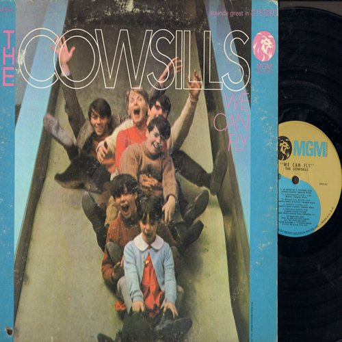 Cowsills - We Can Fly: Gray Sunny Day, One Man Show, What Is Happy Baby (vinyl STEREO LP record) - EX8/VG7 - LP Records