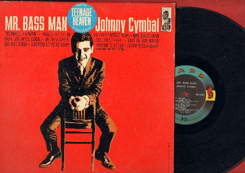 Cymbal, Johnny - Mr. Bass Man: Teenage Heaven, Walk Right In, Our Day Will Come, Indian Giver, You're Sixteen, Do The Bird, Cinderella baby, South Street (vinyl MONO LP record, RARE 1963 first pressing!) - EX8/VG7 - LP Records