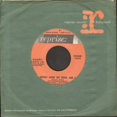 Davis, Sammy Jr. - What Kind Of Fool Am I/Gonna Build A Mountain (with vintage Reprise company sleeve) - NM9/ - 45 rpm Records