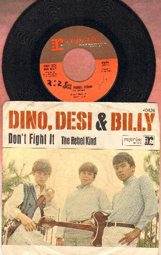 Dino, Desi & Billy - The Rebel Kind/Please Don't Fight It (with picture sleeve) - EX8/VG6 - 45 rpm Records
