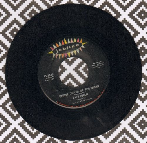 Dudley, Dave - Under Cover Of The Night/Please Let Me Prove (My Love For You) - EX8/ - 45 rpm Records
