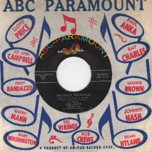 Hayes, Bill - Wringle, Wrangle/Westward Ho, The Wagons (with vintage ABC-Paramount company sleeve) - EX8/ - 45 rpm Records