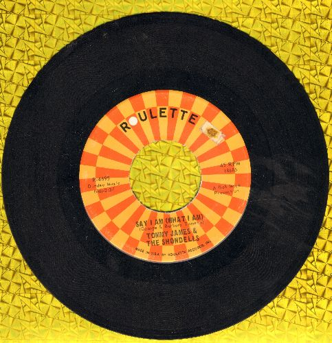 James, Tommy & The Shondells - Say I Am What I Am/Lots Of Pretty Girls - VG7/ - 45 rpm Records