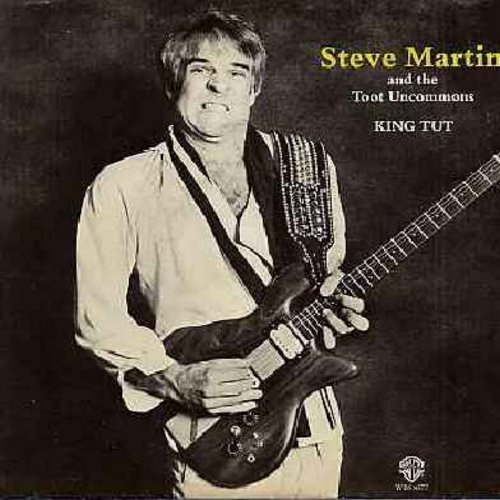 Martin, Steve - King Tut/Sally Goodin (with picture sleeve) - EX8/VG7 - 45 rpm Records