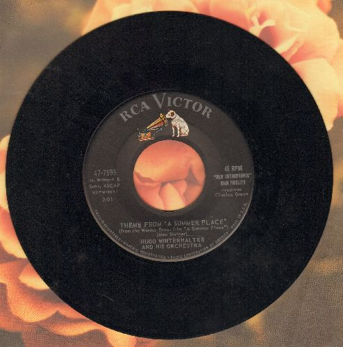 Winterhalter, Hugo - Theme From -A Summer Place-/Blue Strings - EX8/ - 45 rpm Records