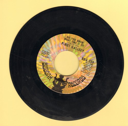 P-Nut Gallery - Do You Know What Time It Is? (Howdy Doody Time!)/Lanny's Tune  - VG7/ - 45 rpm Records