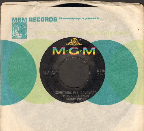 Posey, Sandy - Something I'll Remember/Silly Girl, Silly Boy (with MGM company sleeve) - NM9/ - 45 rpm Records