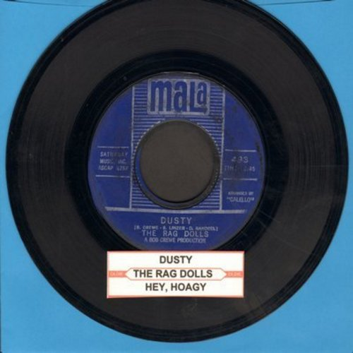 Rag Dolls - Dusty/Hey, Hoagy  - EX8/ - 45 rpm Records
