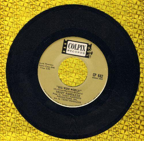 Randazzo, Teddy - Big Wide World/Be Sure My Love (NICE condition!) - NM9/ - 45 rpm Records