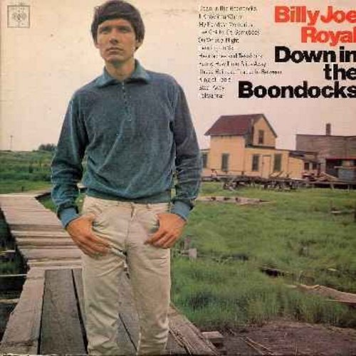 Royal, Billy Joe - Down In The Boondocks: I Knew You When, My Fondest Memories, Oh What A Night, Funny How Time Slips Away, King Of Fools, Pollyanna, Steal Away (vinyl LP record) - EX8/VG7 - LP Records