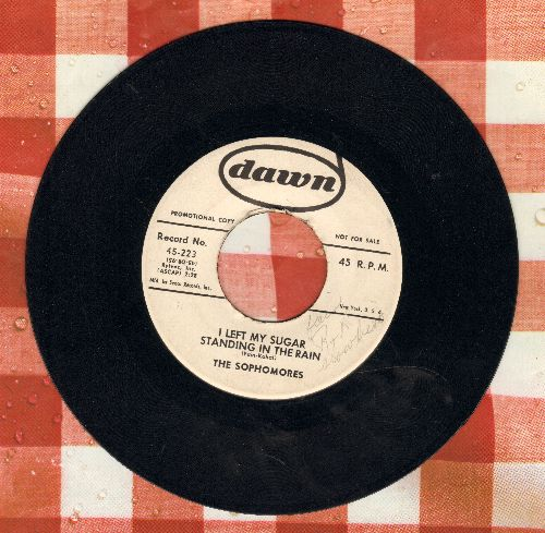 Sophomores - I Left My Sugar Standing In The Rain/Ocean Blue (DJ advance pressing) (minor wol) - EX8/ - 45 rpm Records