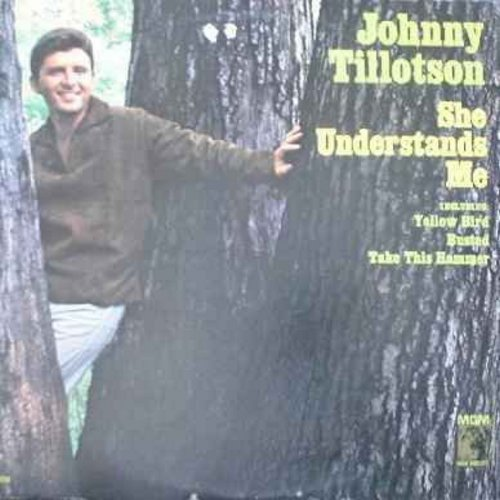 Tillotson, Johnny - She Understands Me: Yellow Bird, Busted, Take This Hammer, Tomorrow, Little Boy, Island Of Dreams (vinyl LP record) - EX8/EX8 - LP Records