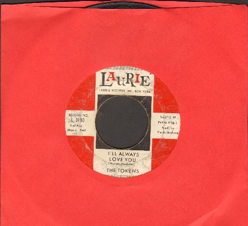 Tokens - I'll Always Love You/Please Write  - VG6/ - 45 rpm Records