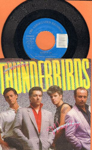 Fabulous Thunderbirds - Wrap It Up (I Take It)/True Love (with picture sleeve) - EX8/VG7 - 45 rpm Records