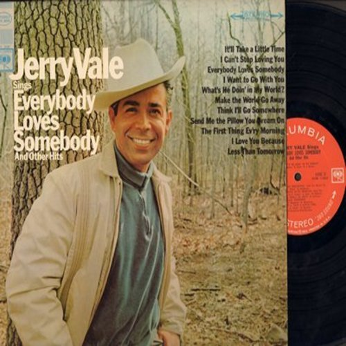 Vale, Jerry - Everybody Loves Somebody: I Can't Stop Loving You, Send Me The Pillow You Dream On (vinyl STEREO LP record) - NM9/NM9 - LP Records