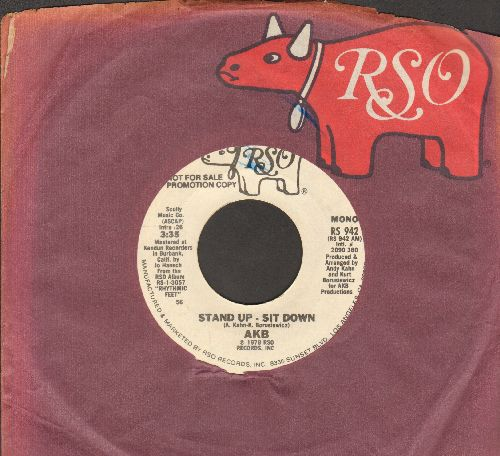 AKB - Stand-Up - Sit Down (double-A-sided DJ advance pressing with RSOcompany sleeve) - NM9/ - 45 rpm Records