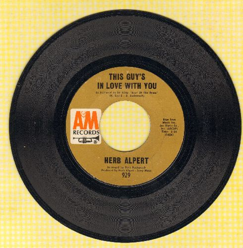 Alpert, Herb - This Guy's In Love With You/Quiet Tear - VG7/ - 45 rpm Records