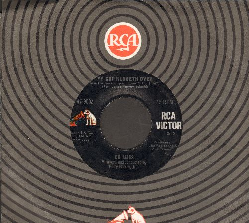 Ames, Ed - My Cup Runneth Over (From Broadway Production -I Do, I Do-)/It Seems A Long Long Time (with RCA company sleeve) - EX8/ - 45 rpm Records