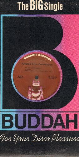 True, Andrea Connection - N.Y. You Got Me Dancing (6:00 Minutes Extended Disco Version)/Fill Me Up (Heart To Heart) (10:03 Minutes) (12 inch vinyl Maxi Single with Buddah company cover) - NM9/ - 45 rpm Records
