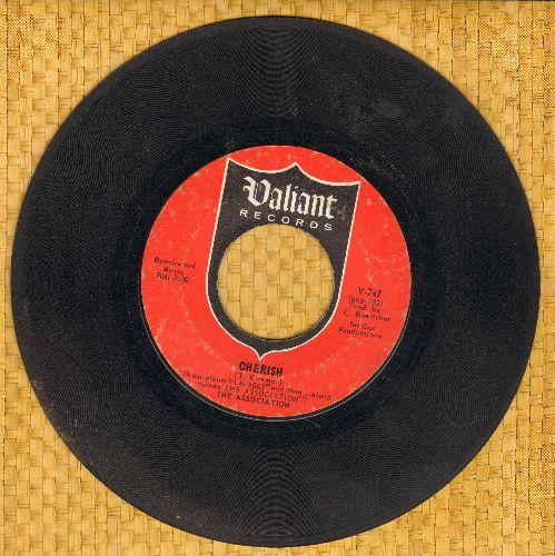 Association - Cherish/Don't Blame It On Me - VG7/ - 45 rpm Records