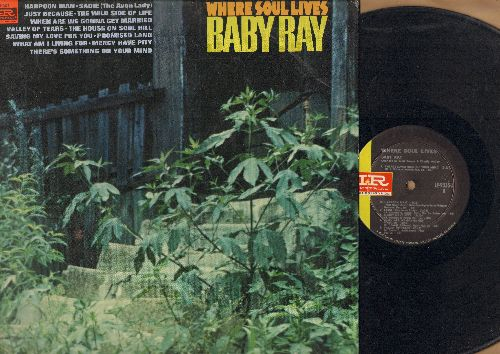Baby Ray - Where Soul Lives: There's Something On Your Mind, Sadie (The Avon Lady), Valley Of Tears, The House On Soul Hill, What Am I Living For (vinyl MONO LP record) - EX8/EX8 - LP Records