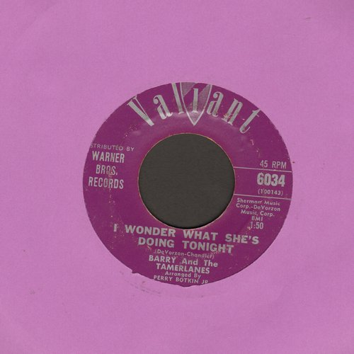 Barry & The Tamberlanes - I Wonder What She's Doing Tonight/Don't Go - VG7/ - 45 rpm Records
