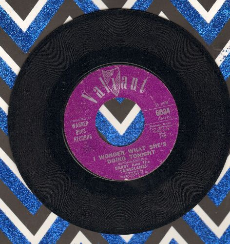 Barry & The Tamberlanes - I Wonder What She's Doing Tonight/Don't Go - EX8/ - 45 rpm Records
