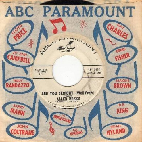 Breed, Allen - Are You Alright (Well Yeah)/I've Been Lookin' For You (DJ advance pressing with vintage ABC-Paramount company sleeve) - EX8/ - 45 rpm Records