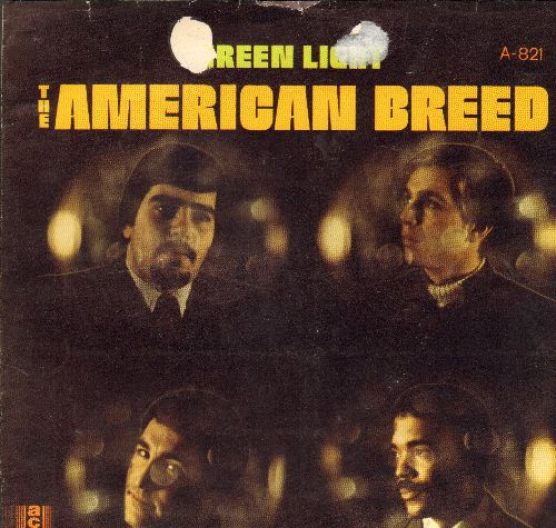 American Breed - Green Light/Don't It Make You Cry (with picture sleeve) (wol) - EX8/EX8 - 45 rpm Records