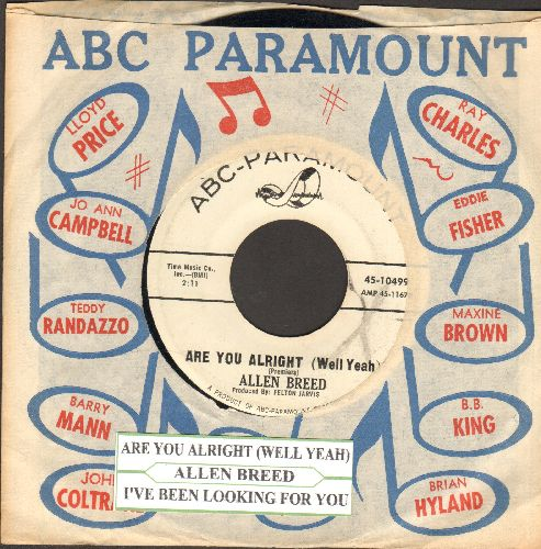 Breed, Allen - Are You Alright (Well Yeah)/I've Been Lookin' For You (DJ advance pressing with vintage ABC-Paramount company sleeve and juke box label) - EX8/ - 45 rpm Records