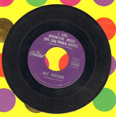 Budzilek, Ray & The Boys In The Band - I Like Mountain Music (We Like Polka Music)/Ice Cubes And Beer - EX8/ - 45 rpm Records
