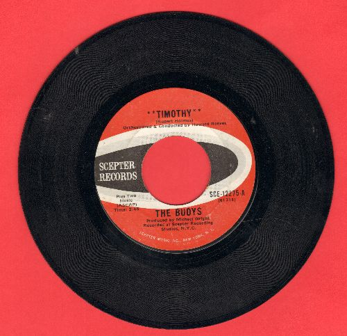 Buoys - Timothy/It Feels Good  - EX8/ - 45 rpm Records