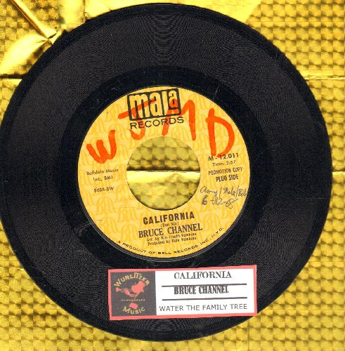 Channel, Bruce - California/Water The Family Tree (PROMO pressing with juke box label) (wol) - NM9/ - 45 rpm Records