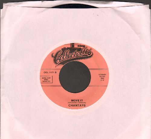 Chantay's - Pipeline/Move It (re-issue) - M10/ - 45 rpm Records