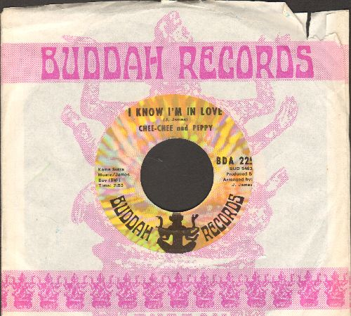 Chee Chee & Peppy - I Know I'm In Love/My Love Will Never Fade Away (with Buddah company sleeve) - EX8/ - 45 rpm Records