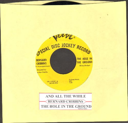 Cribbins, Bernard - The Hole In The Ground/And All The While (DJ advance pressing with juke box label) - EX8/ - 45 rpm Records