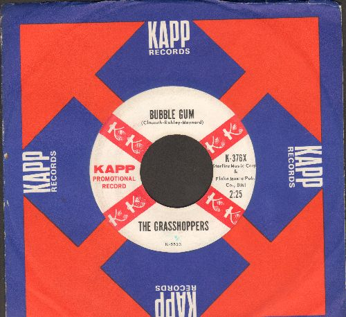 Grasshoppers - Tammy/Bubble Gum (DJ advance pressing with Kapp company sleeve) - EX8/ - 45 rpm Records