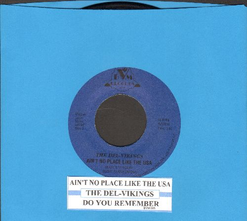 Del-Vikings - Ain't No Place Like The U.S.A./Do You Remember - NM9/ - 45 rpm Records