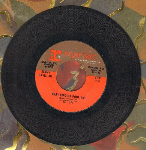 Davis, Sammy Jr. - What Kind Of Fool Am I/Gonna Build A Mountain (authentic-looking early re-issue) - EX8/ - 45 rpm Records