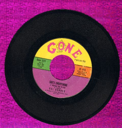 Donner, Ral - She's Everything/Because We're Young - VG7/ - 45 rpm Records