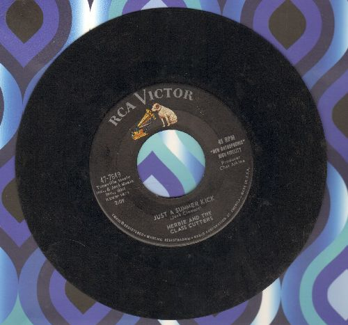 Herbie & The Class Cutters - Just A Summer Kick/Like Those Ivy Walls, Man  - VG7/ - 45 rpm Records