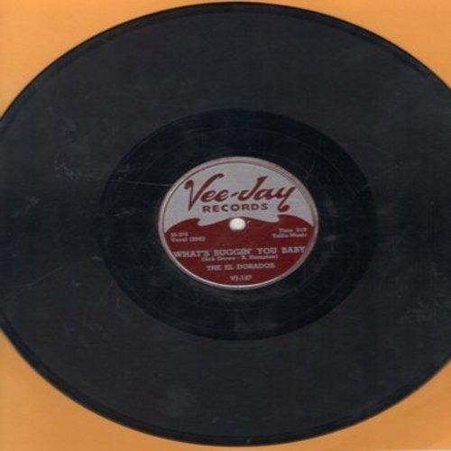El Dorados - What's Buggin' You Baby/At My Front Door (10 inch 78 rpm record) - VG7/ - 78 rpm