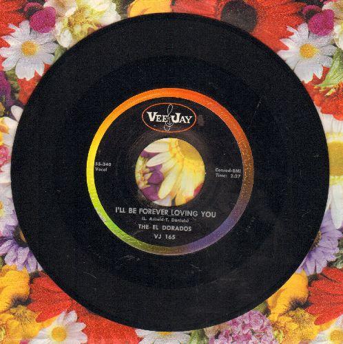 El Dorados - I'll Be Forever Loving You/I Began To Realize - NM9/ - 45 rpm Records